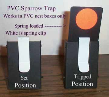 Van Ert PVC Nestbox Sparrow Trap