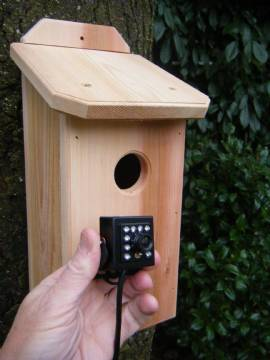 Northwoods Cedar Birdhouse with Hawk Eye HD Cam