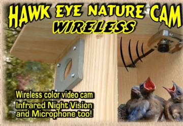 Hawk Eye Wireless Cam