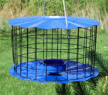 Bluebird / Songbird Mealworm Feeder